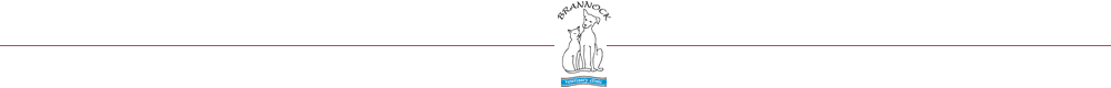 Brannock Vets Motherwell logo