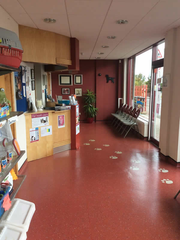 Brannock Vets waiting room